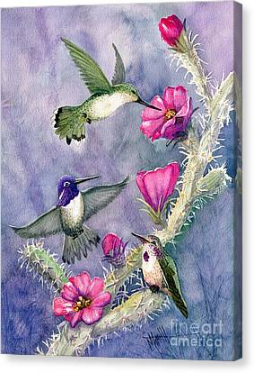 Feeding Canvas Print - Costa Hummingbird Family by Marilyn Smith