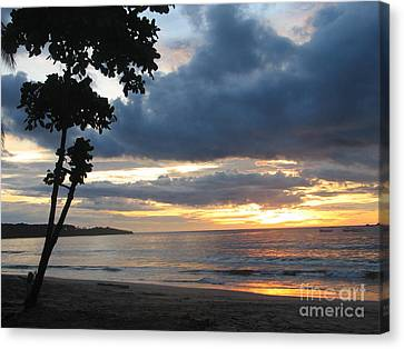 Canvas Print featuring the photograph Costa Rica Palm Sunset - Seascape by Shelia Kempf