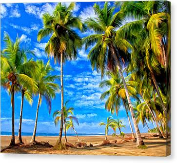 Costa Rican Paradise Canvas Print by Michael Pickett