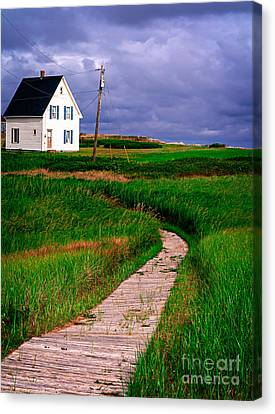 Cottage Among The Dunes Canvas Print by Edward Fielding