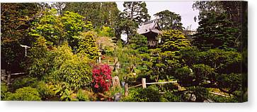 Cottage In A Park, Japanese Tea Garden Canvas Print