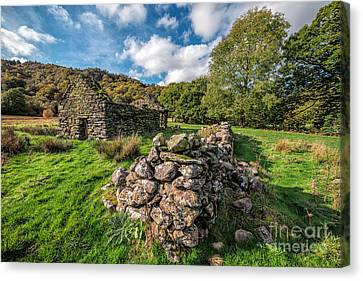 Fall Grass Canvas Print - Cottage Ruin by Adrian Evans