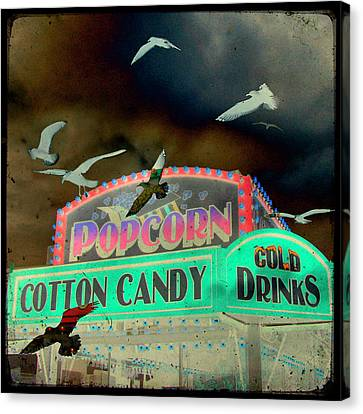 Flying Seagull Canvas Print - Cotton Candy by Gothicrow Images