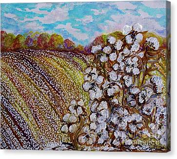 Cotton Fields In Autumn Canvas Print by Eloise Schneider