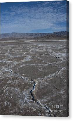 Panamint Valley Canvas Print - Cottonball Basin At Death Valley by Juli Scalzi