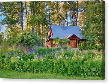 Cottonwood Cottage Spring 2014 Photographs Taken By Omaste Witko Canvas Print