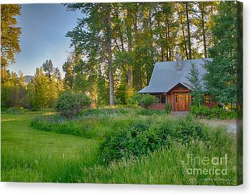 Cottonwood Cottage With Spring Lupine Canvas Print