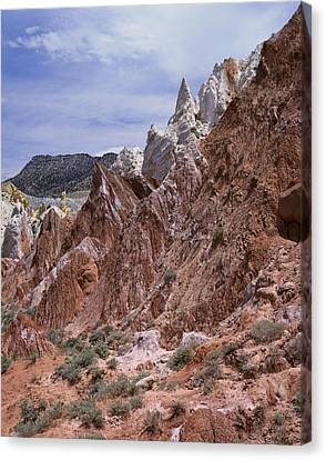 Cottonwood Spires 1-v Canvas Print