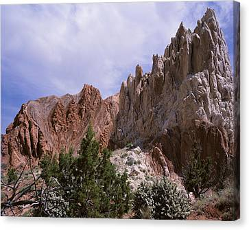 Cottonwood Spires 2 Canvas Print