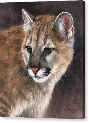 Cougar Cub Painting Canvas Print by Rachel Stribbling