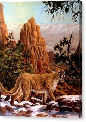 Cougar Canvas Print by W  Scott Fenton