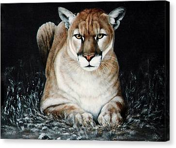 Canvas Print featuring the painting Cougar Waiting by DiDi Higginbotham