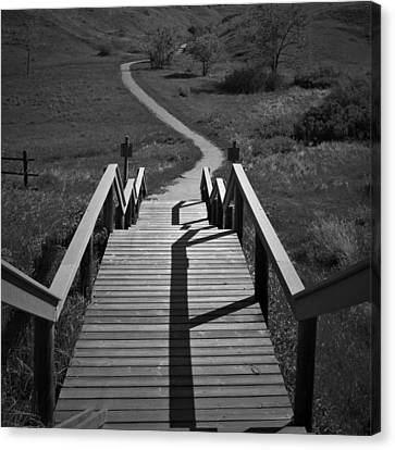 Coulee Stairs Canvas Print by Donald S Hall