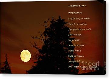 Counting Crows - Old Superstitious Nursery Rhyme Canvas Print by Barbara Griffin