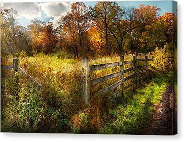 Country - Autumn Years  Canvas Print by Mike Savad