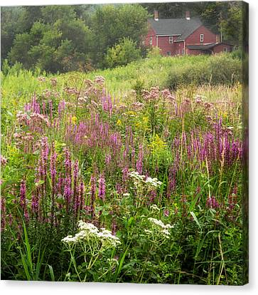 Litchfield County Canvas Print - Country Bouquet by Bill Wakeley