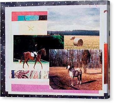 Country Collage 6 Canvas Print by Mary Ann  Leitch