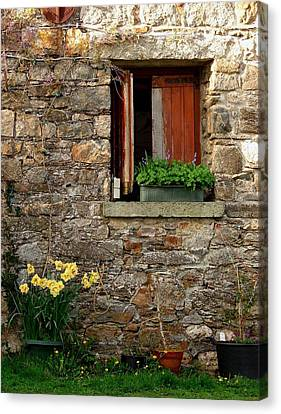 Country Courtyard Ireland Canvas Print