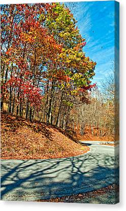 Country Curves And Vultures Canvas Print by Steve Harrington