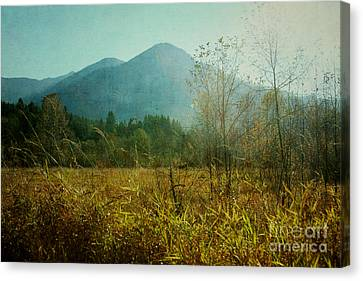 Canvas Print featuring the photograph Country Drive by Sylvia Cook
