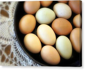 Country Egg Skillet Canvas Print by Cricket Hackmann