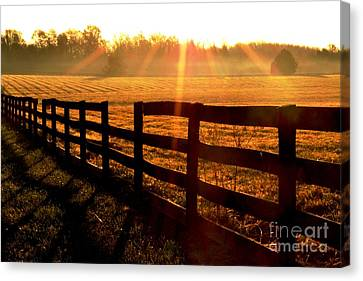 Country Fence Canvas Print by Carlee Ojeda