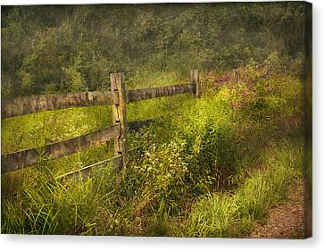 Country - Fence - County Border  Canvas Print by Mike Savad