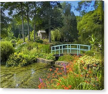 Country Garden Canvas Print by Darren Wilkes