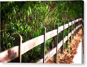 Country Green Canvas Print