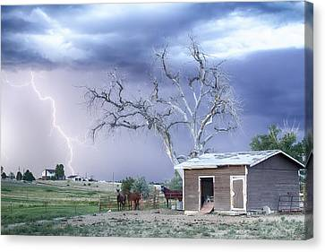 Country Horses Lightning Storm Co   Canvas Print by James BO  Insogna