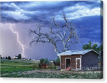 Country Horses Lightning Storm Ne Boulder County Co Hdr Canvas Print by James BO  Insogna