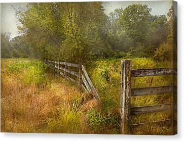 Country - Landscape - Lazy Meadows Canvas Print