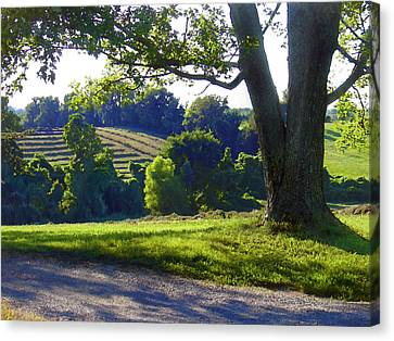 Country Landscape Canvas Print by Steve Karol
