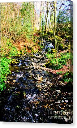 Canvas Print featuring the photograph Country Life by Doc Braham