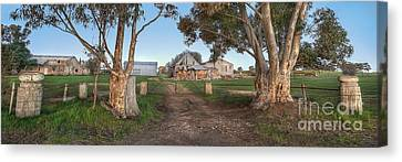 Country Life Canvas Print by Shannon Rogers