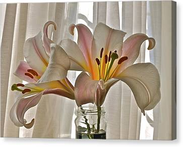 Canvas Print featuring the photograph Country Lilies by K L Kingston