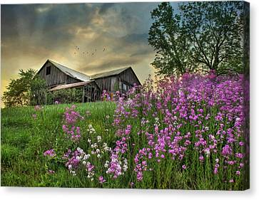 Country Living 3 Canvas Print by Lori Deiter