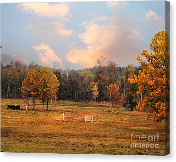 Country Morning Canvas Print by Jai Johnson