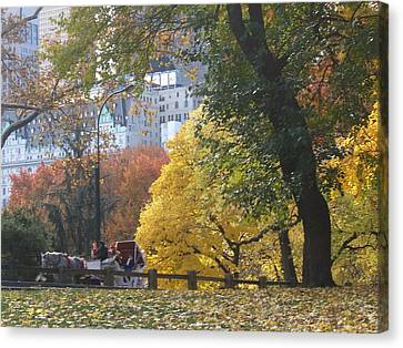 Canvas Print featuring the photograph Country Ride In The City by Barbara McDevitt