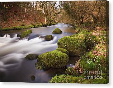 Country River Scene Wales Canvas Print by Pearl Bucknall