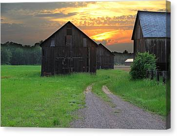 Country Road Canvas Print by Andrea Galiffi