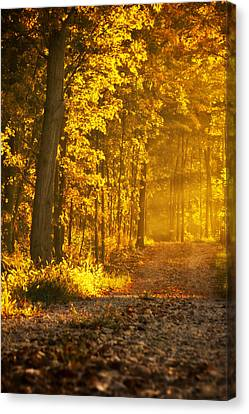 Country Road Central Indiana Canvas Print by Michael Huddleston