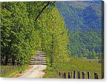 Canvas Print featuring the photograph Country Road by Geraldine DeBoer