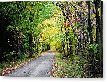 Country Road Canvas Print by Heather Allen