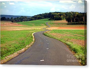 Country Road In France Canvas Print by Olivier Le Queinec