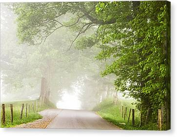 Country Road In The Fog Canvas Print by Andrew Soundarajan