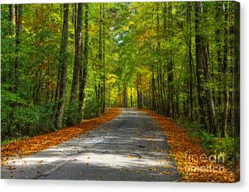 Country Road Canvas Print by Larry Braun