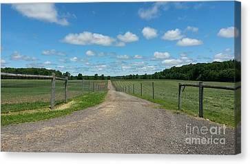 Country Road Canvas Print by Michelle Lenkner