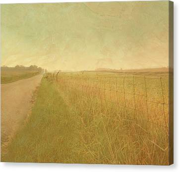 Country Road Canvas Print by Tammy Apple