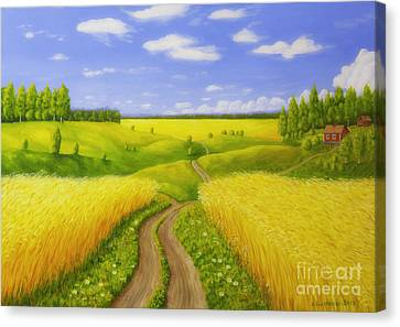 Country Road Canvas Print by Veikko Suikkanen